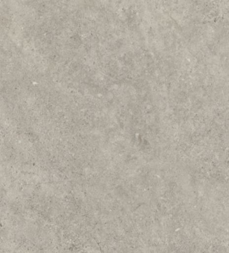 2342 Burnished Concrete
